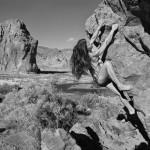 I calendari con le foto degli sportivi nudi